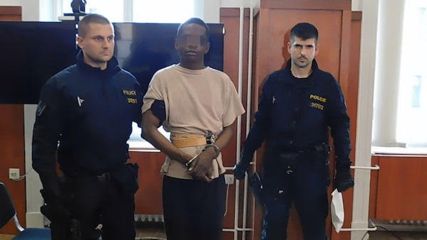 Czech Republic:  Update and video regarding Merkel's Migrant from either Libya or Mali who raped a 16 year-old Czech girl…only hours after Germany released him from prison.