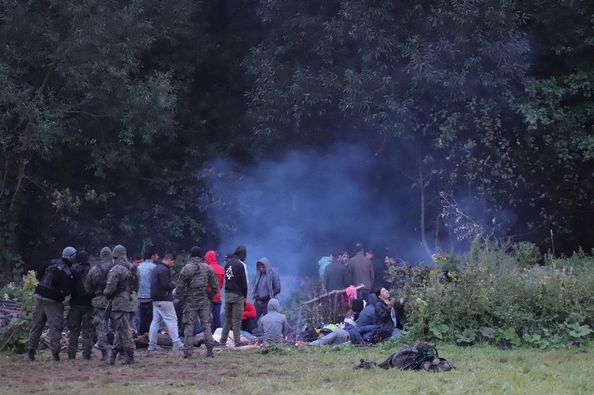 UNHCR appeals to Poland to admit so-called 'stranded' illegals on Belarus border.