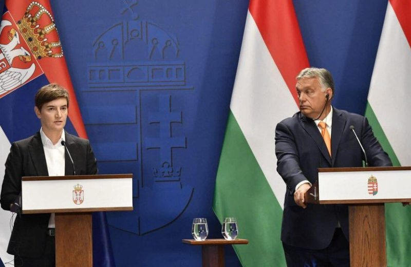 PMs of Hungary and Serbia meet, pledge to 'Rebuild, Protect, Central Europe'.